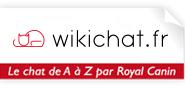 wikichat-logo